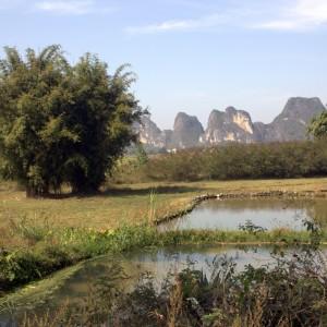 Landscapes (3)