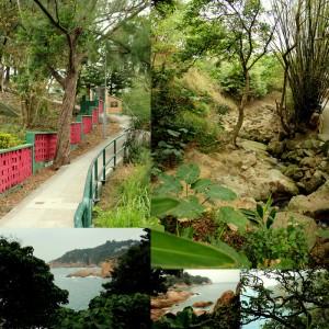 processes_soo_landscapes_0001_10_cheung_chau