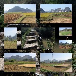 processes_soo_landscapes_0007_04_ming_gan